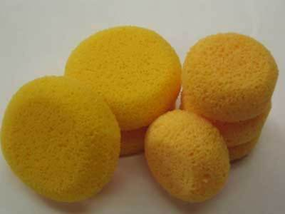 Hydra Sponge - Small