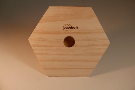 Mould - Hexagon