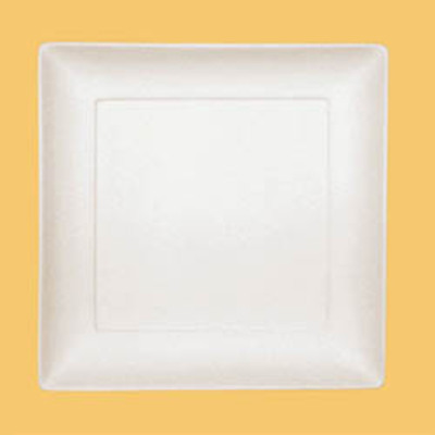 Asian Square Dinner Plate