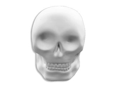 Skull Mighty Tot